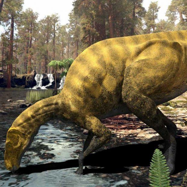 Descubren huellas fósiles de de dinosaurio en Burgos y se las dedican a Andrés Iniesta. Foto: Descarga de pantalla
