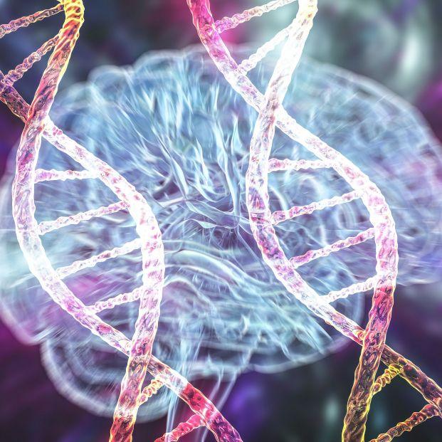 Identifican un gen como causante de una nueva enfermedad neurológica en un estudio. Foto: Bigstock