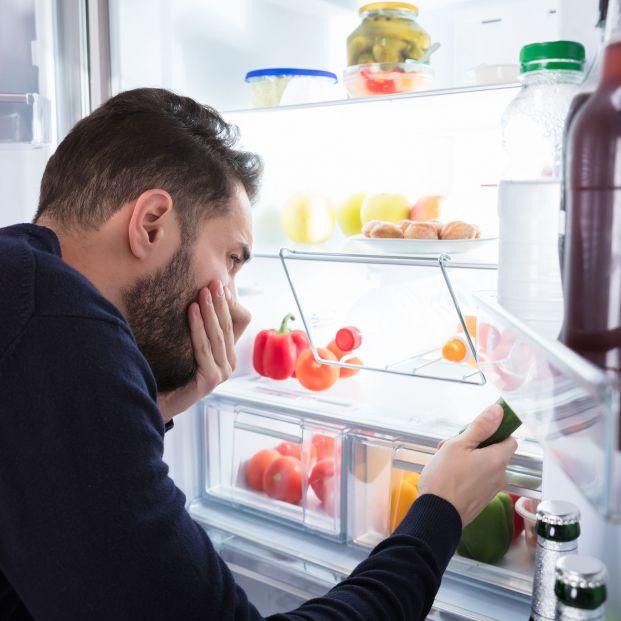 Qué hacer con los alimentos del frigorífico si hay un corte de luz (Foto: Bigstock)