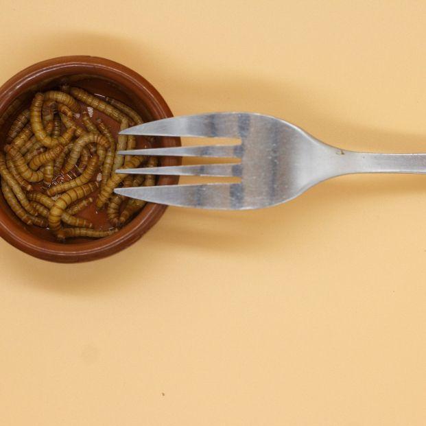 Qué es el gusano de la harina y por qué debes evitar este nuevo alimento si tienes estas alergias (Foto Bigstock)