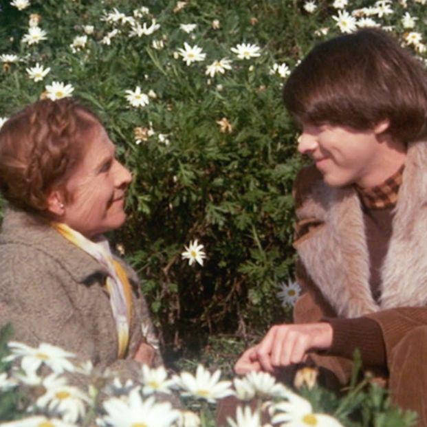 Vuelve 'Harold y Maude', la inolvidable historia de amor entre un adolescente y una mujer de 79 años