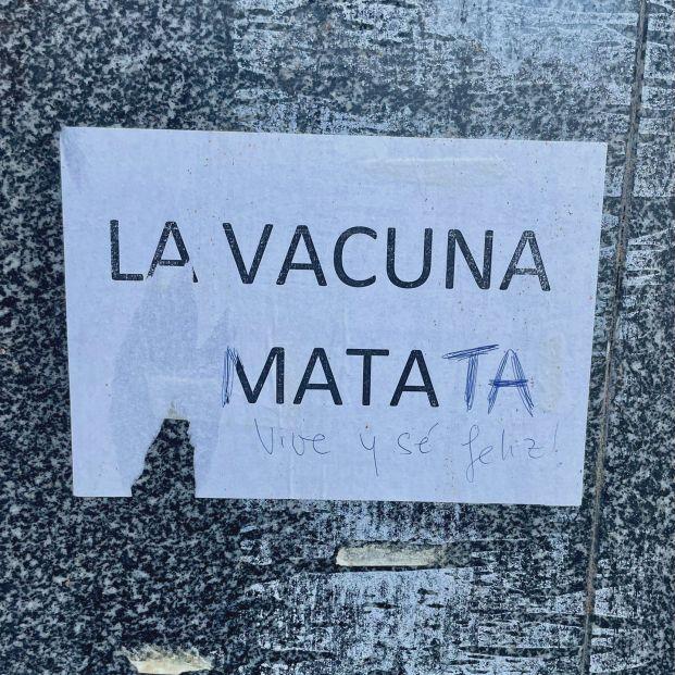 vacuna matata