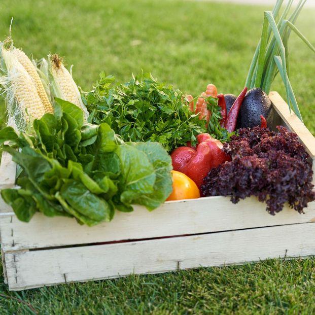Estas son las frutas y verduras de temporada en septiembre. Foto: bigstock