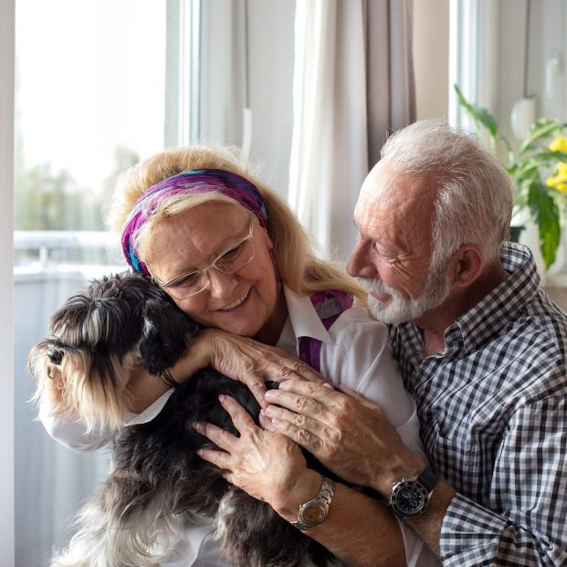 Adoptar mascotas (bigstock)