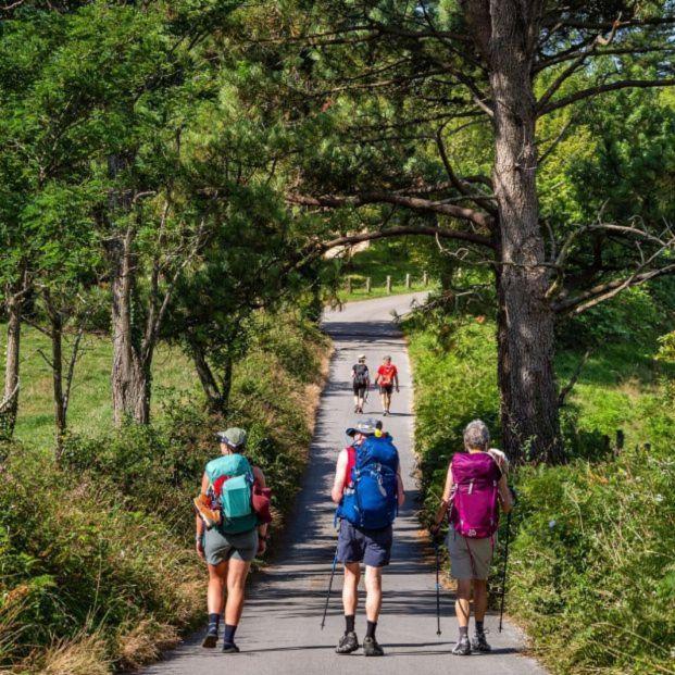 El Camino de Santiago tiene más de un millar de tramos que suponen un riesgo para los peregrinos