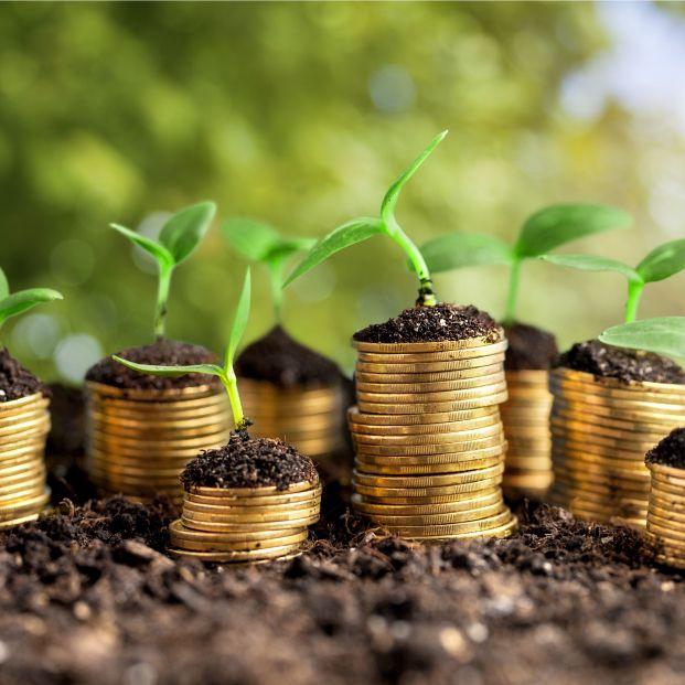El 90% de los consumidores no pagarían más por la sostenibilidad de un producto financiero