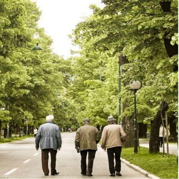 Reconocen el complemento de maternidad en la pensión a un padre jubilado