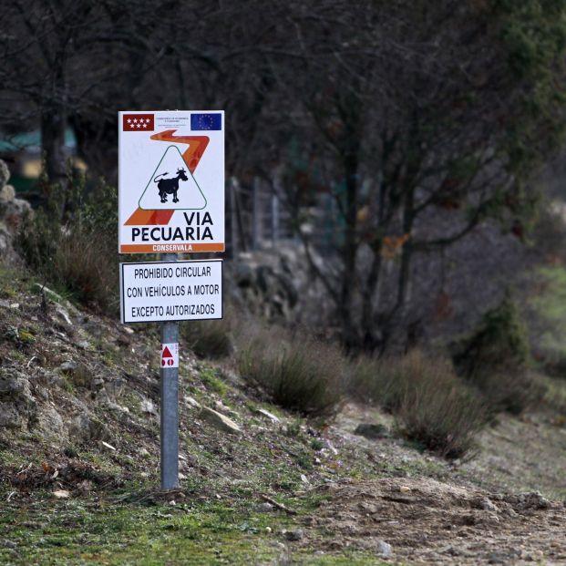 EuropaPress 1705639 Ecologistas critica la desidia en la gestión de las vías pecuarias de la Comunidad de Madrid