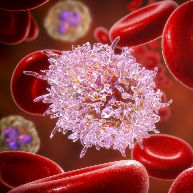 Una pionera terapia pública contra el cáncer podría llegar a final de año