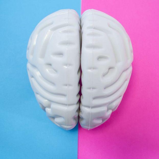 Qué hay de verdad sobre las diferencias entre el cerebro masculino y el femenino
