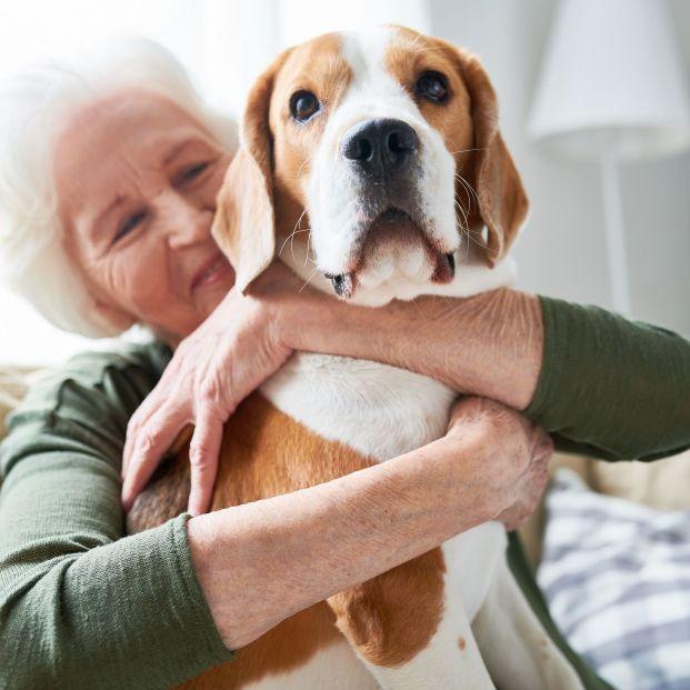 Tener perro (o no) está en los genes