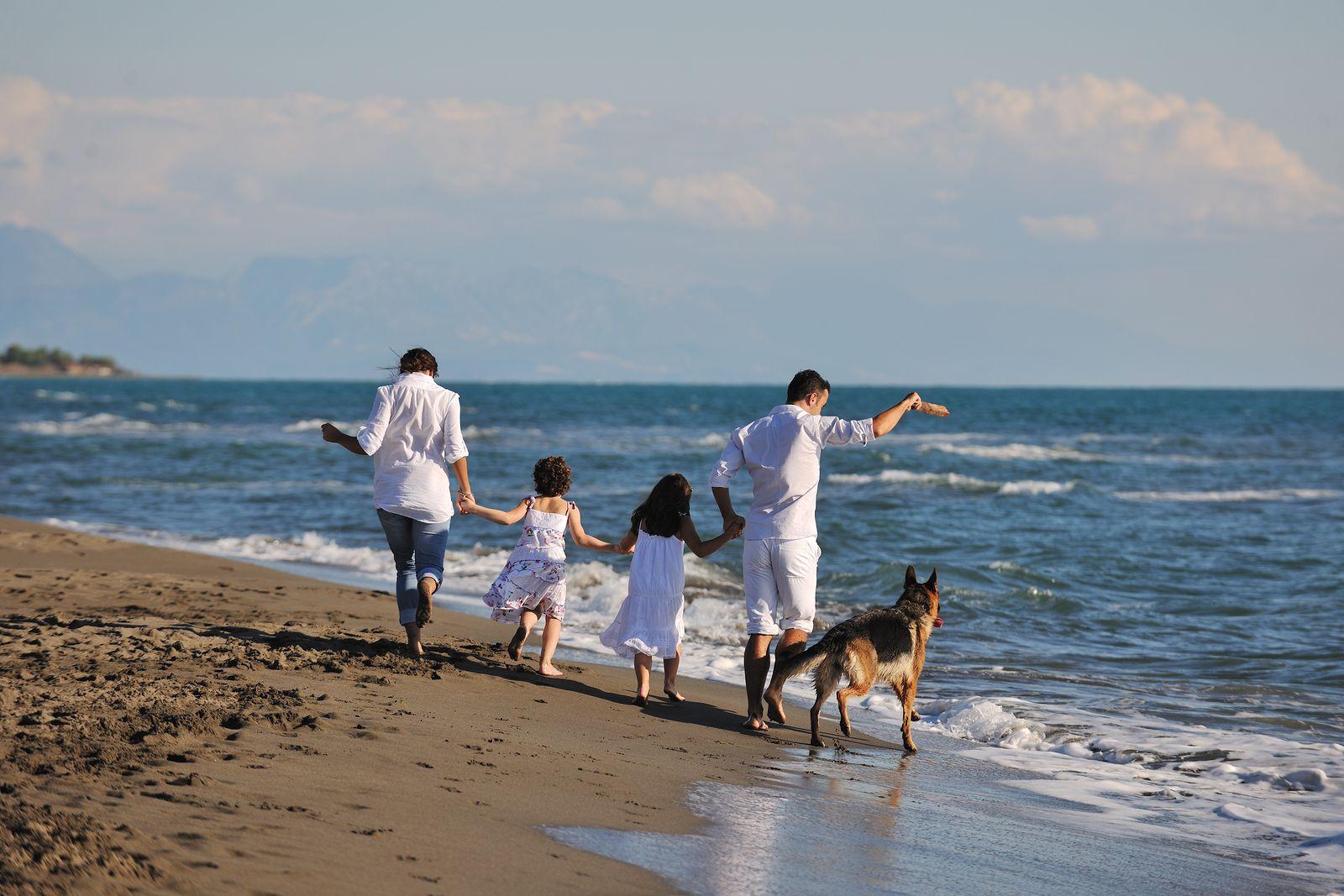 бегущая семья по берегу океана картинки жаростойкости уступает
