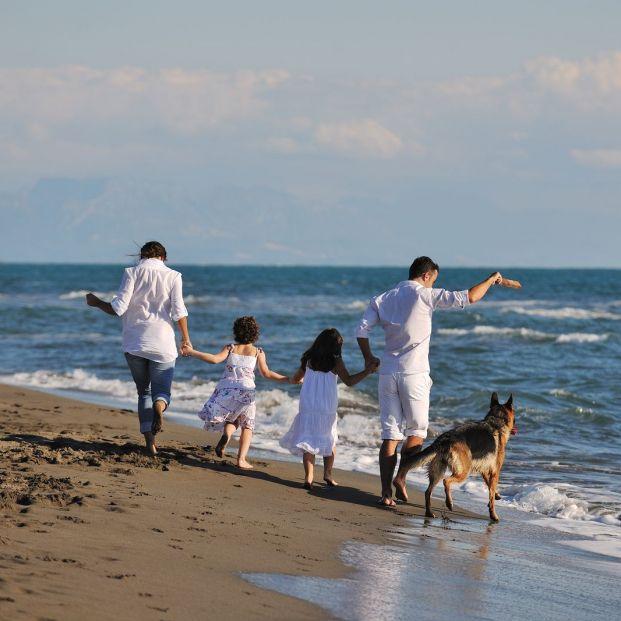 Las mejores playas caninas de Andalucía