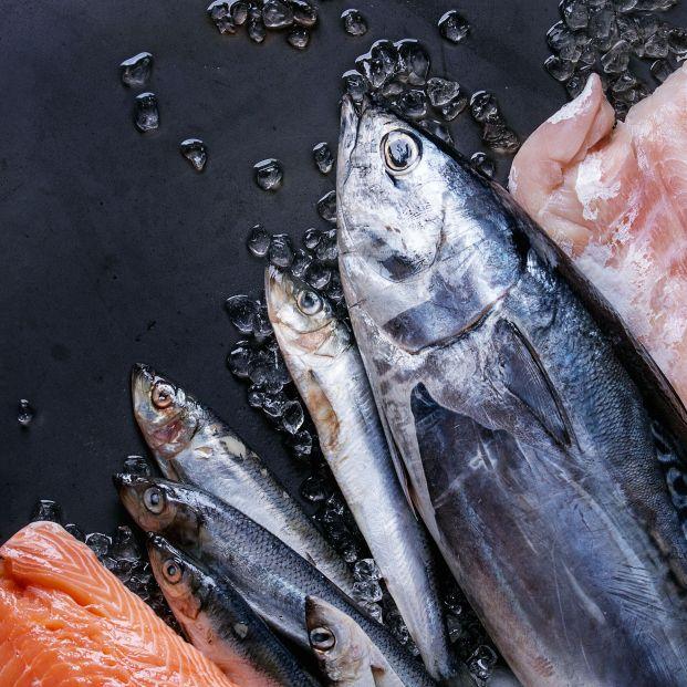 Conoce todo sobre la ciguatera: la intoxicación por consumir pescado contaminado
